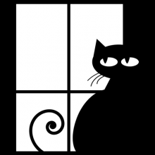 Black cat at window black and white apparel