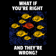 What If You are Right They are Wrong fargo Fish