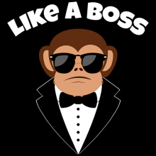 Like a boss cool monkey wearing sunglasses