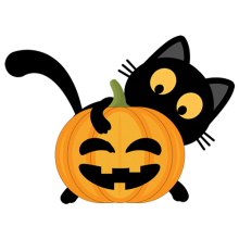A black cat playing with the Halloween pumpkin gifts