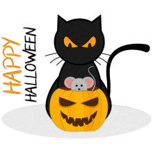 A black cat is angry at a mouse hiding in a Halloween pumpkin gifts
